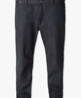 Pantalon jeans The Regular 66 Stretch Extra Comfort